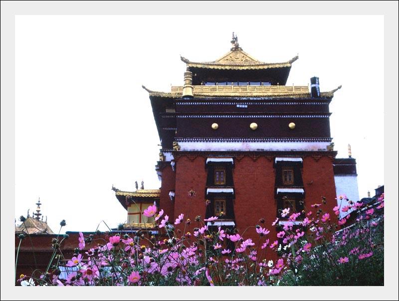 带着自行车去西藏 (八) 扎什伦布寺