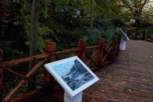 把展览融入环境中——古银杏村里的艺术展